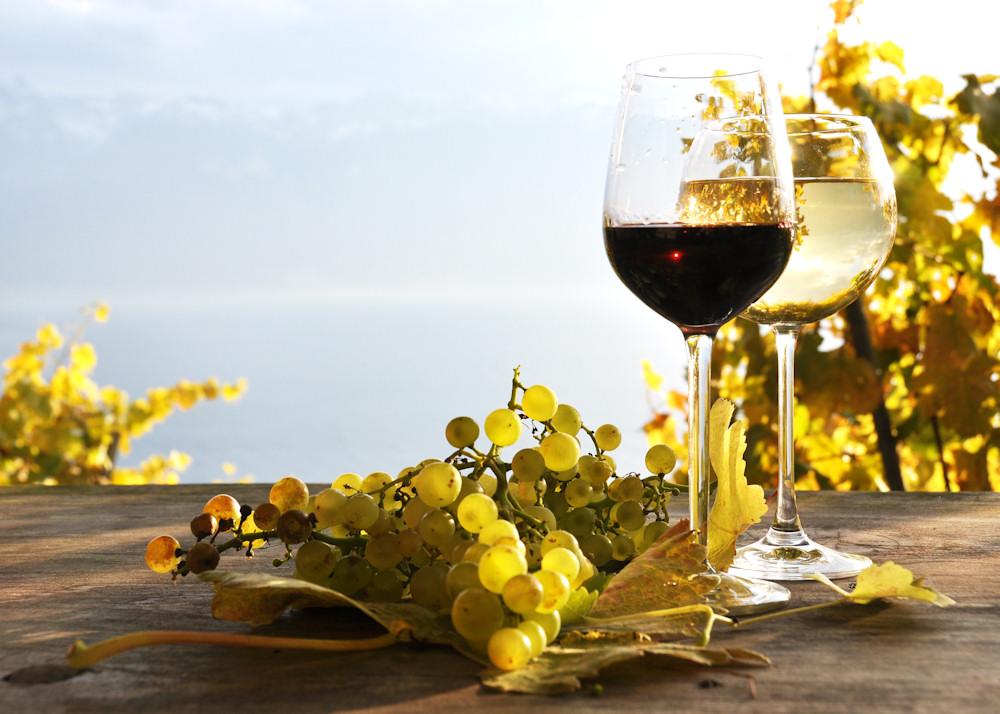 Weinproben sind auch auf Kreuzfahrtschiffen möglich