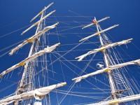 Die Hafenfeste bieten für die Besucher ein buntes Unterhaltungsprogramm!