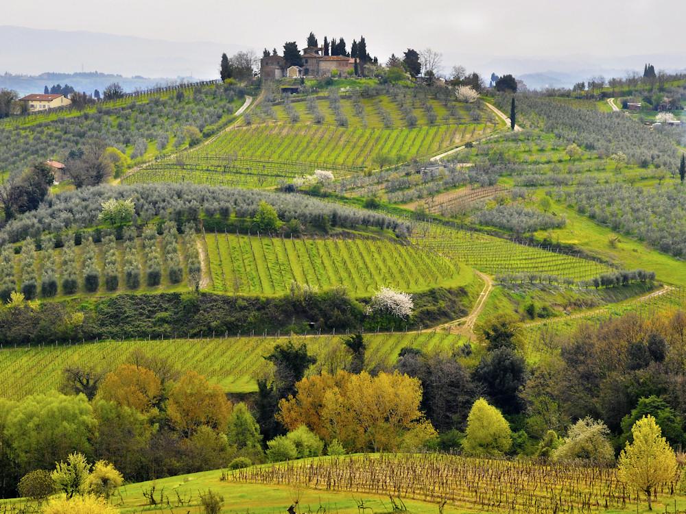 Lernen Sie bei Weinkreuzfahrten Anbaugebiete und verschiedene Weinsorten kennen.