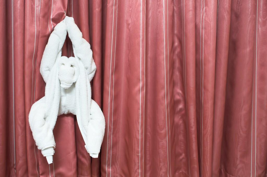 Handtuch-Affe zum Towel Day / Foto: Rob Byron - Fotolia